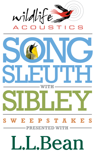 Song Sleuth with Sibley Sweepstakes